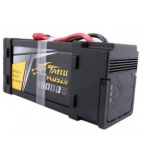 batería 6S Tattu Plus 2.0 18000mAh 15C