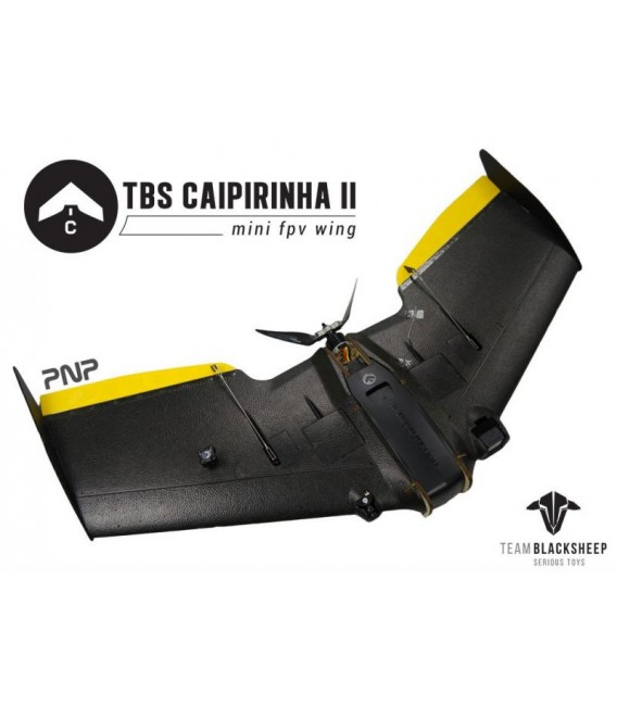 CAIPIRINHA2 flying Wing TBS PNP